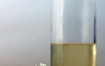 Meine Top 3 Rezepte mit Holunderblüten