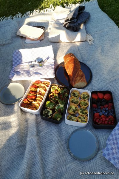 Picknick mit verschiedenen Mini-Quiches und frischem Obst im Karlsruher Schlosspark
