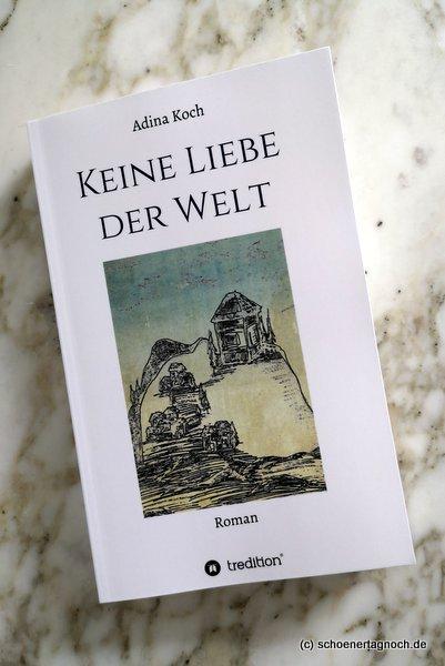 """Buch """"Keine Liebe der Welt"""" von Adina Koch"""