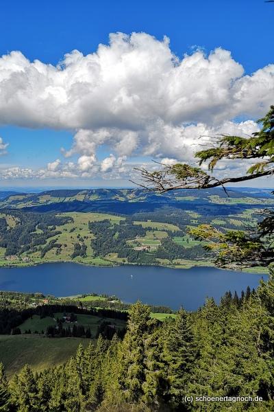 Blick auf den Großen Alpsee vom Immenstädter Horn aus