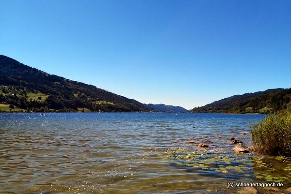 Ufer des großen Alpsees im Allgäu